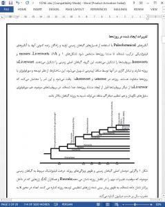 10746 IranArze1
