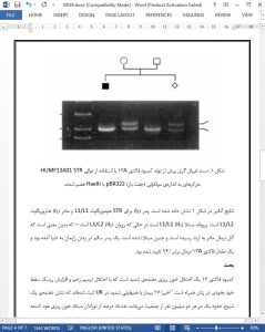 10939 IranArze1