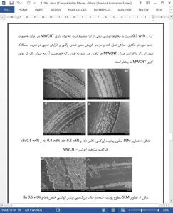 11044-IranArze1