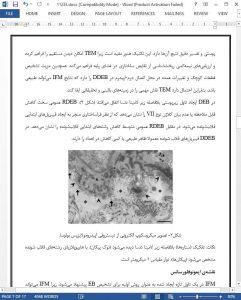 11233-IranArze1