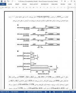 11252-IranArze1