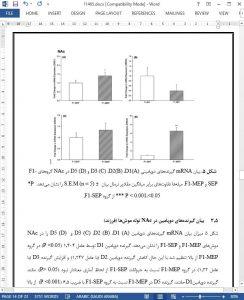 11465-IranArze1