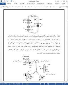 11478-IranArze1