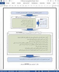 11505-IranArze1